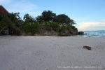 alona-beach-panglao-bohol-078
